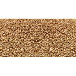 Hulled Sesame Seeds, For Cooking