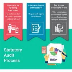 Consulting Firm Statutory Audit Statutory Auditing Services, Delhi Ncr