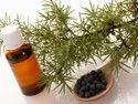 Juniper Berry Natural Essential Oil