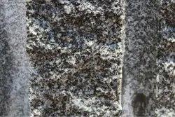 Royal black  tiger black granite rough blocks