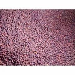 Supari Areca Nut