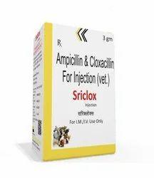 3 gm Ampicillin And Cloxacillin For Injection (Vet)