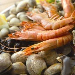 Sea Food Testing Service