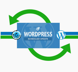 WordPress Update Service for Dollar 29 Only - Get 10 % OFF