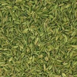 Greenish Fennel Seeds
