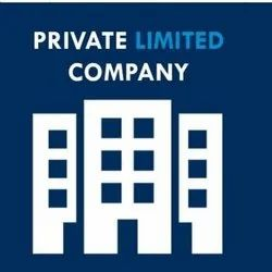 Partnership Within 6 Months Private Limited Company Registration Service, Maharashtra, Professional Experience: 12 Year