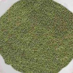 1 kg Celery Powder, Packaging: Packet