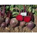 Red Beetroot Seeds