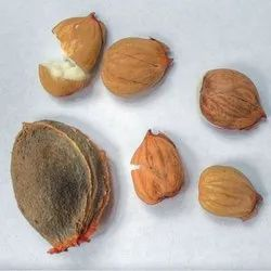 Brown Dry Apricot, Packaging Size: 10 Kg