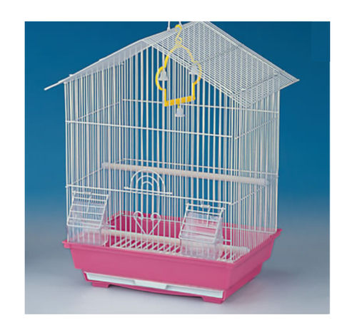 Love Birds With Cage Price