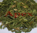 Vincarosea Leaves, Grade: Medicine