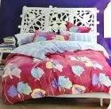 Nutan 5d Queen Bedding Set With 2 Pillow Cover 140 Gsm