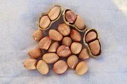 Ground Nut Seed