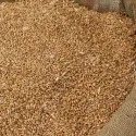 Brown Milling Wheat Grains, Packaging Type: Bag, Packaging Size: 30 Kg, Also Available In 50 Kg