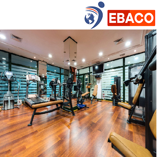 Ebaco Gym Cardio Area Vinyl Flooring, Rs 140 /square Feet