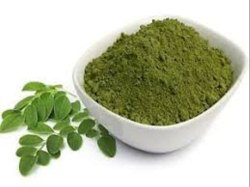 Moringa Leaves Dry Powder