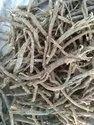 Dry Rasna