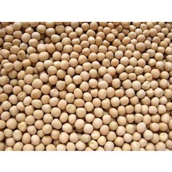 Yellow Dried Pea, High in Protein