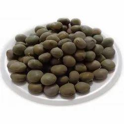 Herbal Karanj Seed, Packaging: Bag, Packaging Size: 25-50 Kg