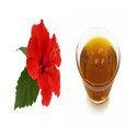 Hibiscus Natural Essential Oil