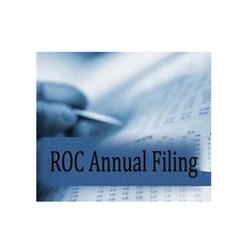 ROC Annual Filing Services