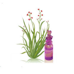 Palma Rosa Oil