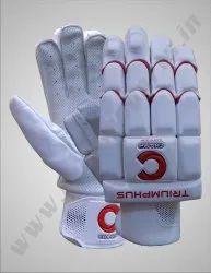 Champ Velcro Cricket Batting Gloves