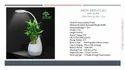 Xech Sound Speaker with LED Light