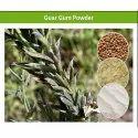High Nutritional Value Pure Guar Gum Powder