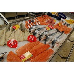 Stainless Steel Commercial Fish Display Counter