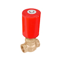 Globe Type 2 Way Valves