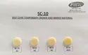110 Gm Acrylic Self Cold Cure Powder