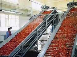 Food Tomato Ketchup Processing Plant, Automation Grade: Automatic