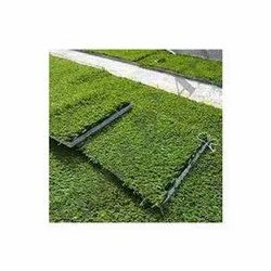 Artificial Synthetic Grass Turfs