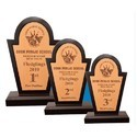 Designer Wooden Trophy