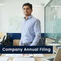 Service Private Limited Company Annual Filling, 20, Pan India