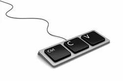 Online Form Filling Works