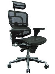 Ergohuman Mesh Chair( High Back)
