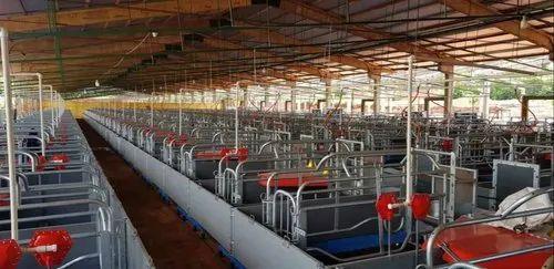 Pig Farming Equipment in New Delhi, Nangloi by Shakya World Trade Private Limited | ID: 21298834391