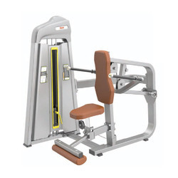 Seated Dip Machine