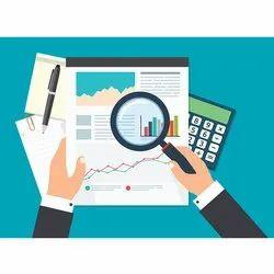 Statutory Auditing Service, Pan India