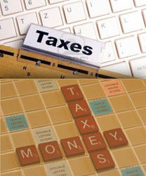 Direct And In Direct Tax Service Service