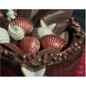 Heritage Chocolates Ocean Shell Shaped Homemade Chocolate