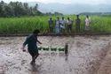 Agriculture Tnau Paddy Seeder