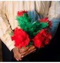 Red Amazing Split Flower