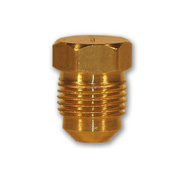 Plug Brass Pipe