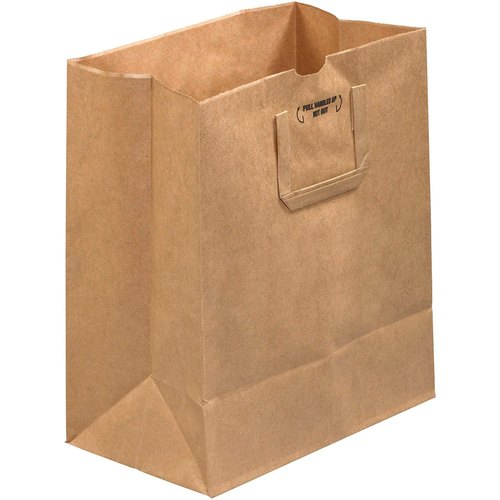 Brown Shopping Craft Paper Carry Bag