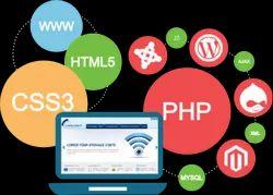 Website Software Development Services