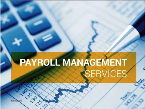 Payroll Services in Dadar East, Mumbai   ID: 21104279588