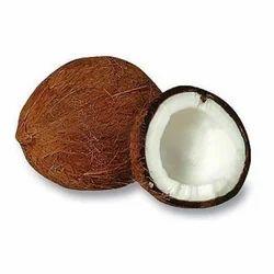 Mature Coconut - Wholesale Price for Mature Coconut in India